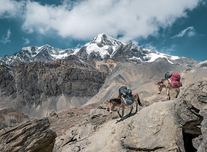 region-himalaya-trek