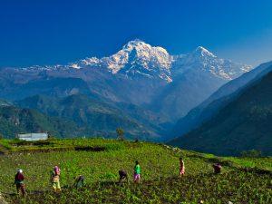region-himalaya